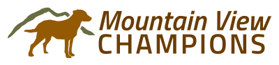 Mountain View Champions